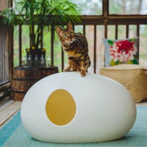 Maison de toilette Design pour chat – POOPOOPEEDO