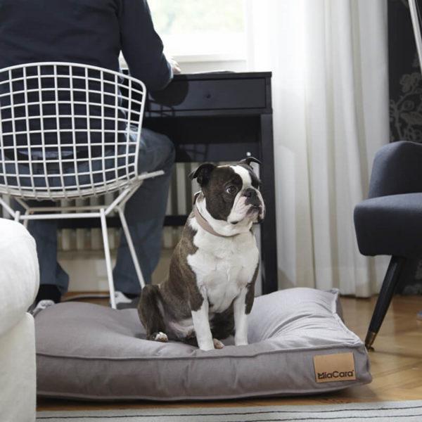 Coussin pour chien - LINO - Muscat