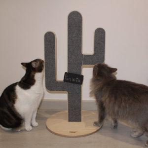 Griffoir design pour chat en bois – CACTUS