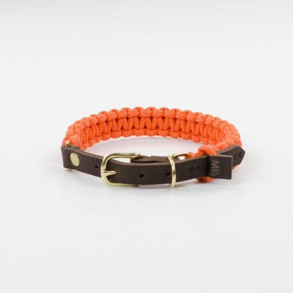 Collier pour chien original en corde - ROPE