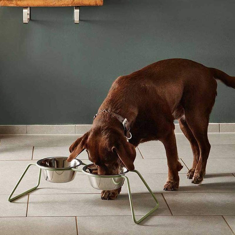 Gamelles pour chien design contemporain - CENA