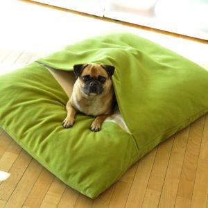 DIVAN DUE – Coussin lit pour chien