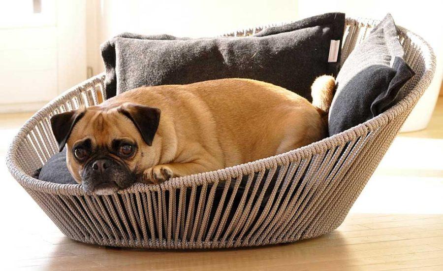 SIRO TWIST - Panier pour chien