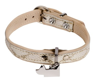 SNAKE - Tortue - Collier cuir petit chien