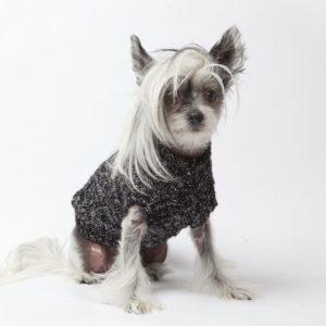 Pull en laine pour chien – BOBBY
