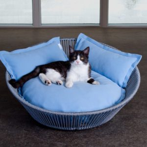 Panier lit design pour chat – SIRO TWIST