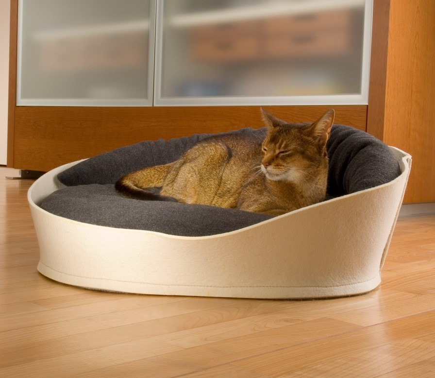 ARENA -Ecru - Lit pour chat