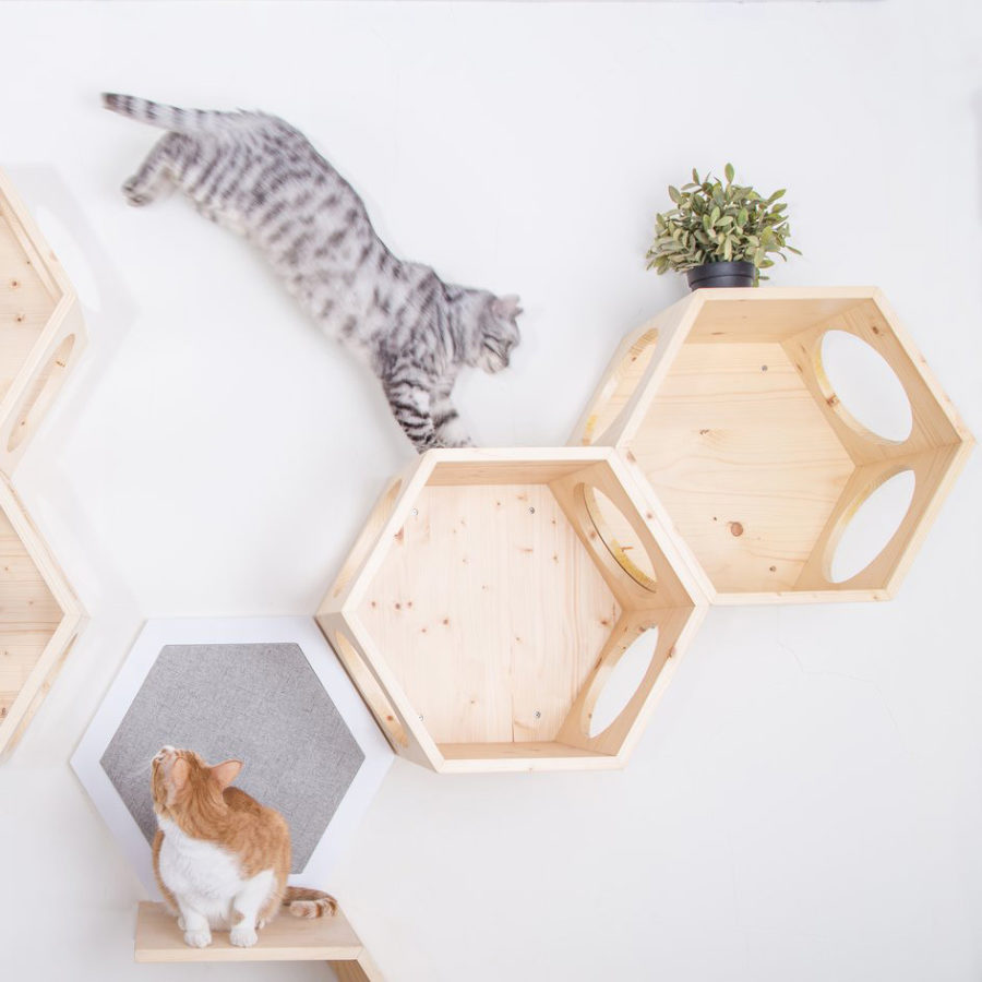 Arbre à chat mural design - BUSYCAT