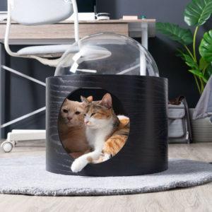 Niche pour chat design – SPACESHIP