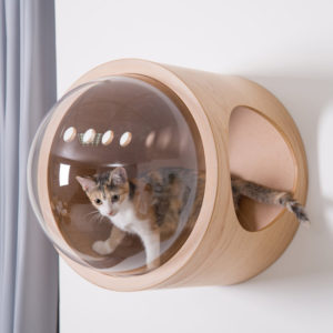 Niche pour chat design – SPACESHIP