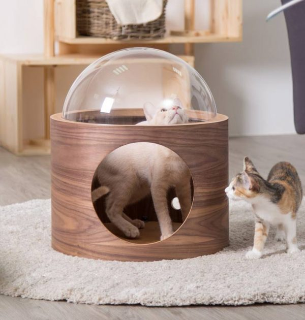 spaceship niche pour chat