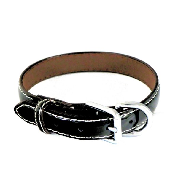 Collier pour chien en cuir vernis noir - LUCIDA