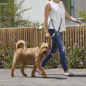 Laisse pour chien 195 cm – RIVA