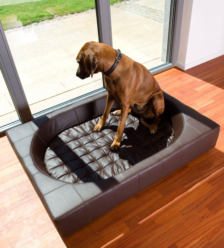 Couchage grand chien XXL - CUBE Cuir