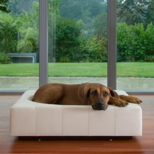 Lit chien luxe – CUBE carré Cuir