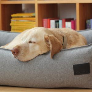 Panier de luxe design pour chien – NUBE
