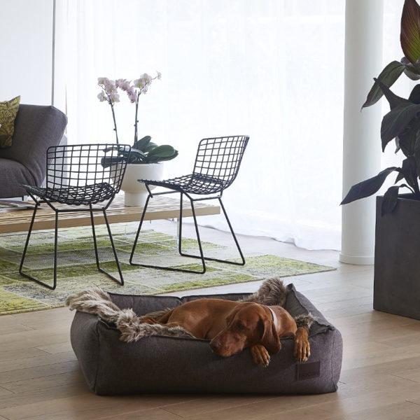 Plaid pour chien en fourrure - LANA Gris silex