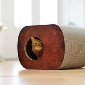 Griffoir niche en carton pour chat – BROCHHAUS JNR