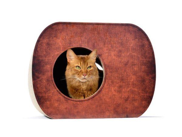 Griffoir niche en carton pour chat - BROCHHAUS JNR