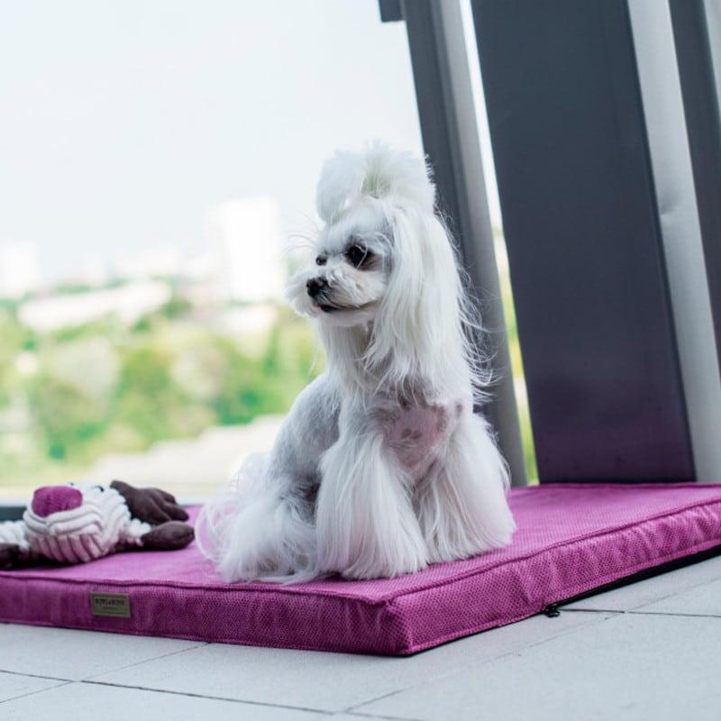 Matelas lit pour chien - DOG MAT