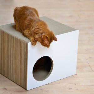 Griffoir maison en carton pour chat – PREDIA EKHAUS