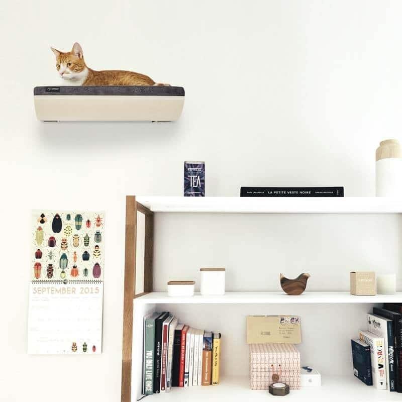 Etagère murale design pour chat - CHILL