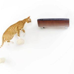 Marche d'escalade pour étagère murale chat