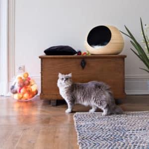 Niche design pour chat – Dandy Ball – Noir
