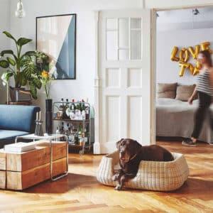 Panier pour chien en osier traditionnel – MIO BASKET
