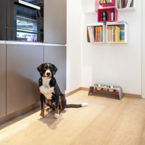 Gamelle double design pour chien – DOG BAR