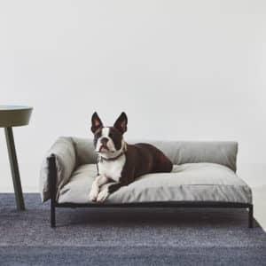 Canapé de luxe pour chien – BRANDINA