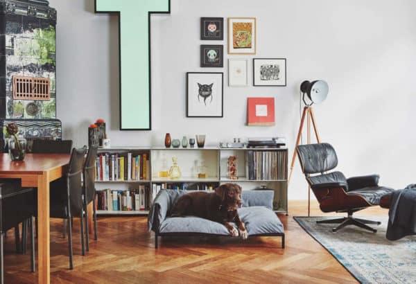 Canapé de luxe pour chien - BRANDINA