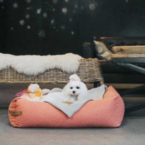 Panier pour chien design scandinave – LOFT