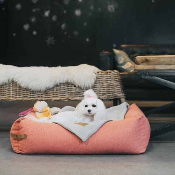 Panier pour chien design scandinave - LOFT