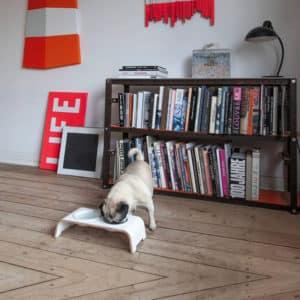 Gamelle surélevée en porcelaine pour chien – DOG BAR