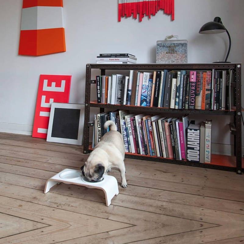 Gamelle surélevée en porcelaine pour chien - DOG BAR