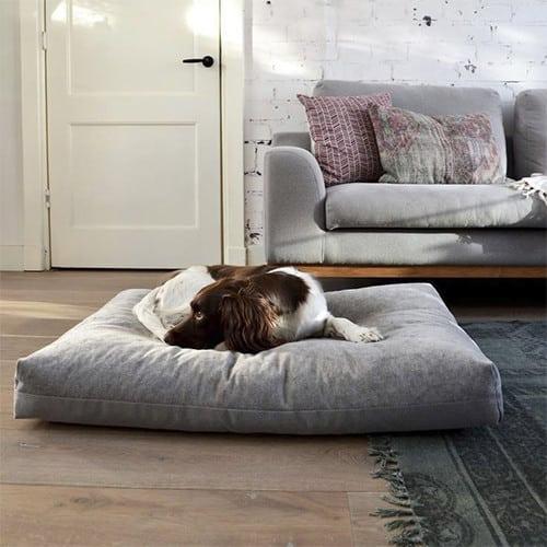Coussin pour chien design de luxe - DUO