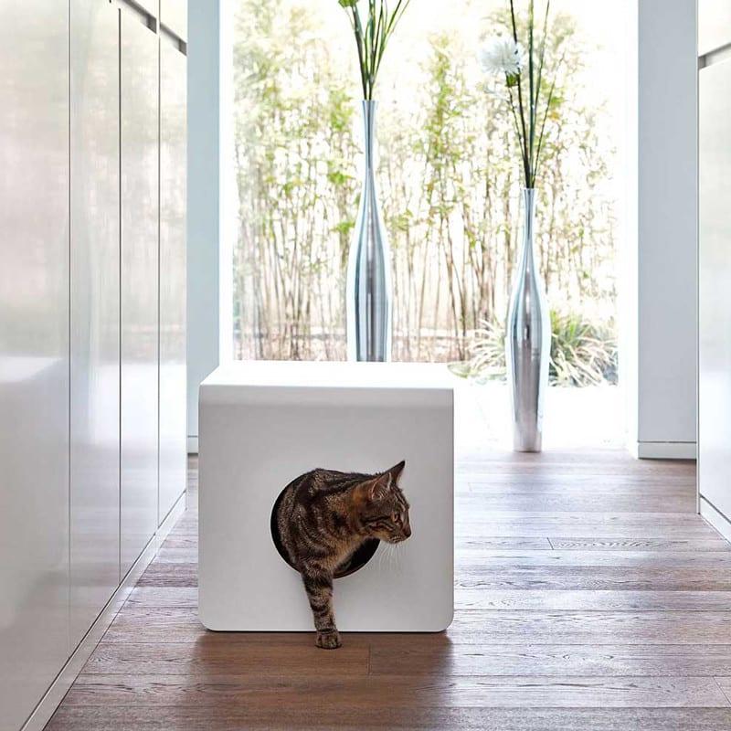 Litière design pour chat - SITO