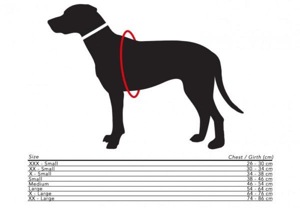 Harnais design et confortable pour chien - BUTTER