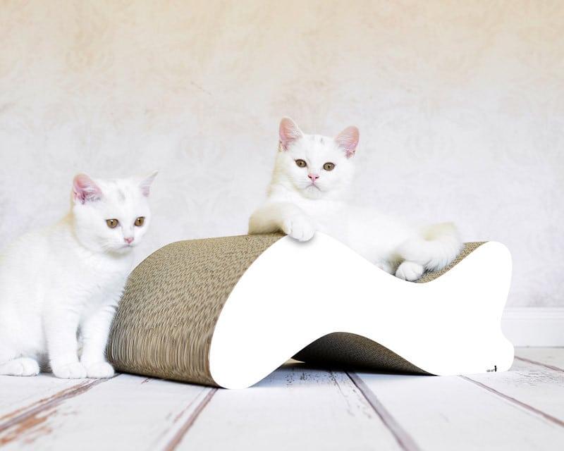 Griffoir en carton design pour chat - KABOU