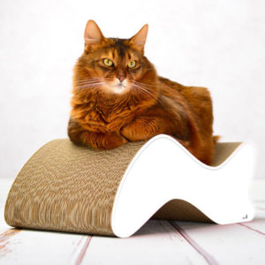 Griffoir en carton design pour chat – KABOU