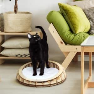 Panier design en bois pour chat – OHANA