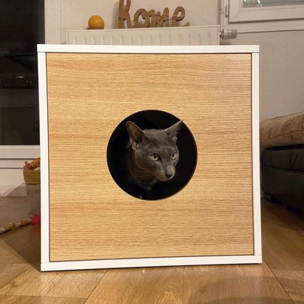 Bac à litière litière design pour chat - DANDY CABINET