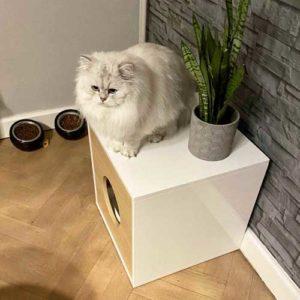 Bac à litière litière design pour chat – DANDY CABINET