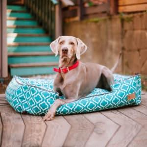 Panier de luxe pour chien style Marocain – Moroccan