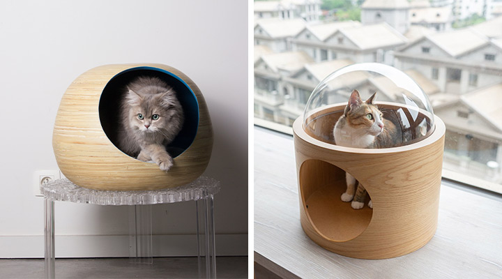 guide des niches design pour chats