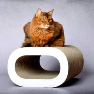 Griffoir en carton design pour chat – LE TRONC XL