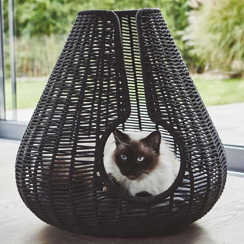 Panier osier chat Perla