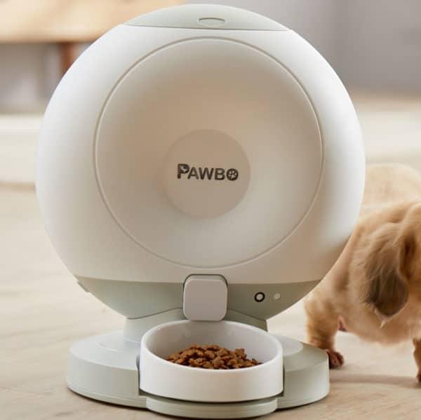 distributeur de croquettes automatique pour chiens