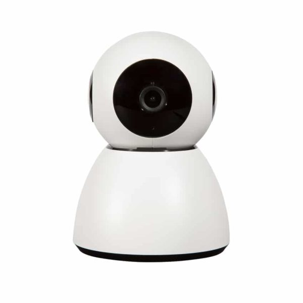 camera surveillance chien chat